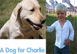 A Dog for Charlie